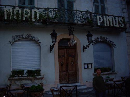 Arles_2_Nord_Pinus