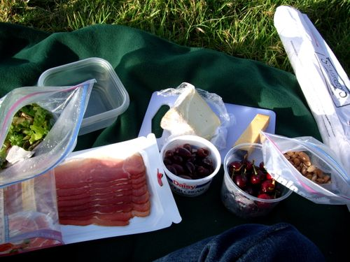 Berkeley_picnic