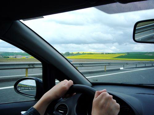Fanny_driving_hands